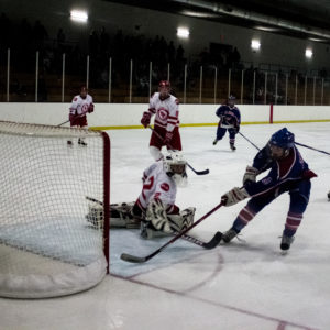 Hockey picture goal